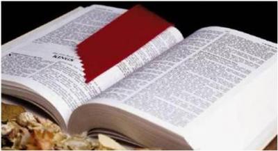 LA Biblia y el celular.